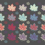 Maple leaf seamless  pattern on grey background. Vector illustration for your design project Stock Photography
