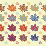 Maple leaf seamless  pattern on white background. Vector illustration for your design project Stock Images