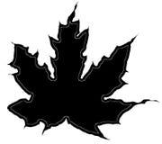 Maple leaf silhouette Stock Photos