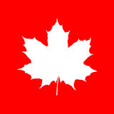 Maple leaf silhouette on red backdrop. Element for your design project Royalty Free Stock Photography