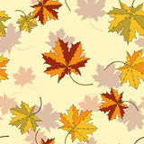 Maple leaf silhouette seamless pattern Royalty Free Stock Photography