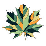 Maple leaf. Silhouette of the maple leaf. Vector illustration Stock Photo