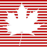 Maple Leaf on Stripes Stock Image