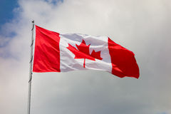 The maple leaf, symbol for canada Stock Photography