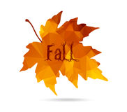 Maple leaf in triangular style with hand drawn word 'Fall'. Royalty Free Stock Image
