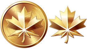 Maple leaf. Two gold maple leaf isolated on white. Eps8. CMYK. Organized by layers. Global colors. Gradients used Royalty Free Stock Image