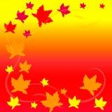 Maple leaf. Vector illustration. Autumn decoration. Beautiful plant Royalty Free Stock Photography