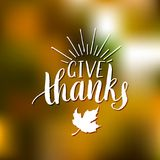 Maple leaf vector illustration with Give Thanks lettering on blurred background. Invitation or festive greeting card. Maple leaf vector illustration with Give Stock Photo