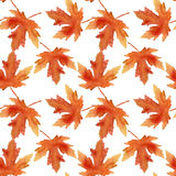 Maple-leaf watercolor pattern Stock Photos