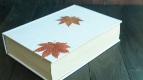 Maple leaf on the white book Royalty Free Stock Image