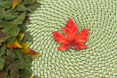 Maple leaf and wicker fall background Royalty Free Stock Photo