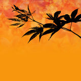 Maple leafs stock illustration