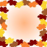 Maple leafs. Four colors maple leafs illustration Stock Photo
