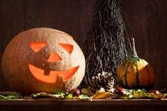 Maple leafs, pumpkins stock photos