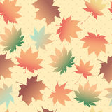 Maple leave fall vector background.  Royalty Free Stock Photo
