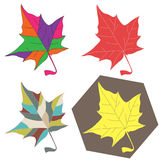 Maple leave set Stock Images