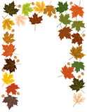 Maple Leaves and Acorns Frame Border Royalty Free Stock Photos