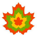 Maple leaves in autumn colors. Colorful maple leaves in autumn colors can be used as a design element Stock Photography