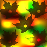 Maple leaves. Autumn, freefall, , nature, bright, multi colored Royalty Free Stock Photos