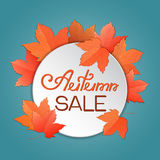 Maple leaves. Autumn sale template for banner, voucher, discount. Stock Photo