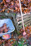 Maple leaves in a big heap. A heap of maple leaves, a wheel barrel and a rake in the autumn Royalty Free Stock Image