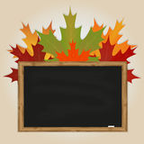 Maple leaves and black chalkboard Royalty Free Stock Images