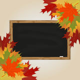 Maple leaves and black chalkboard Royalty Free Stock Photos