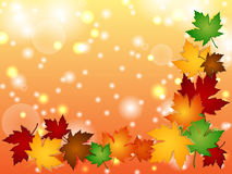 Maple leaves border with light effects Royalty Free Stock Images