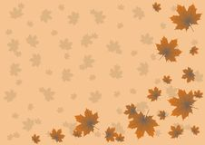 Maple leaves flying in the autumn background Stock Photo