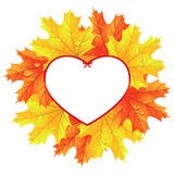 Maple leaves in the frame in the shape of heart Royalty Free Stock Images