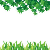 Maple Leaves and Grass Royalty Free Stock Photography