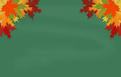 Maple leaves on green chalkboard Stock Photography