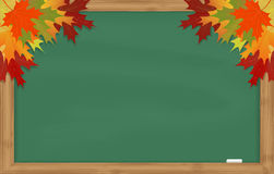 Maple leaves on green chalkboard Royalty Free Stock Photography