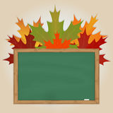 Maple leaves on green chalkboard Stock Images