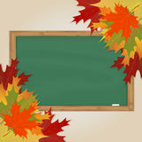 Maple leaves and green chalkboard Royalty Free Stock Photos