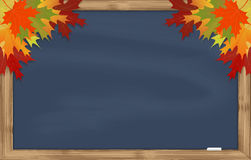 Maple leaves on grey chalkboard Stock Images