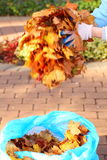 Maple leaves in hand , golden autumn Royalty Free Stock Photos