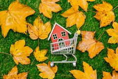 Maple leaves and house inside cart. Golden autumn maple leaves and little wooden house inside cart on green grass. Above view royalty free stock photography
