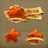 Maple leaves icons Royalty Free Stock Photo
