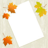 Maple leaves with paper sheet on wooden background texture Stock Photo