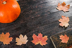 Maple leaves and pumpkin frame Stock Images