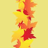 Maple leaves seamless Stock Photos