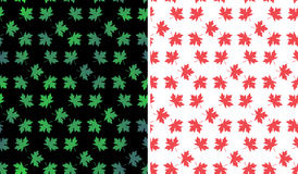 Maple leaves pattern background Royalty Free Stock Image
