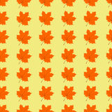 Maple leaves seamless pattern Stock Image