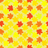 Maple leaves seamless pattern Stock Photos