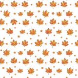 Maple leaves. Seamless pattern, hand draw, vector. stock illustration
