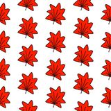 Maple leaves seamless pattern hand drawn in minimalistic style vector illustration