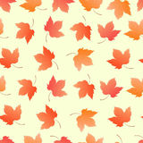 Maple leaves seamless pattern for wallpaper, wrapping paper, background. Stock Images