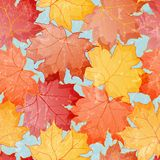 Maple leaves seamless wallpaper Royalty Free Stock Photos