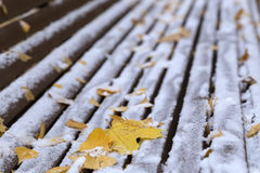 Maple Leaves and snow at the bench.  Royalty Free Stock Photo